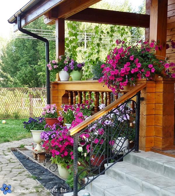 hermosos porches frontales de otoño Cmo Hacer Una Hermosa Parcela En Frente De La Casa Joyas