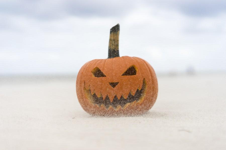 Как сохранить хэллоуинские тыквы от плесени